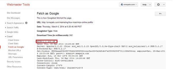 200 OK server response as seen by googlebot
