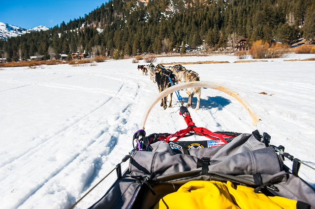adventure holiday tour operator
