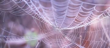 eCommerce Web design tips
